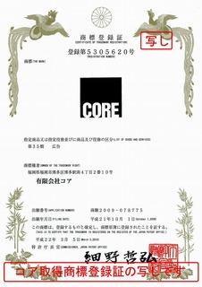 s-2010-03-02rogo-22.jpg